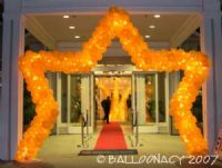 Hilton StarMake your guests the Star of the evening with this walk-thru sculpture! It will make the impression you want! Star arches.  Heart arches also available. Click To Zoom